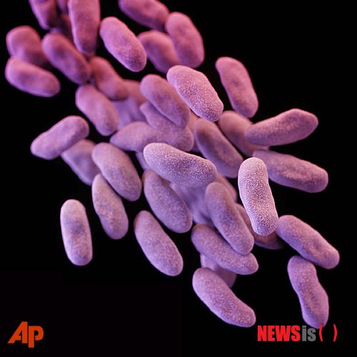 슈퍼박테리아 감염, 최근 4개월간 3337건…항생제 내성 '무방비'